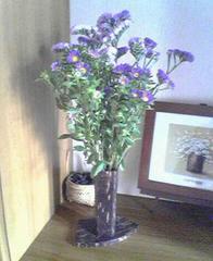 flower07a.jpg