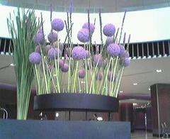 flower11a